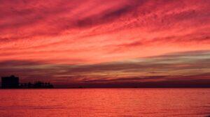 oceano rosso case study Matteo Patitucci